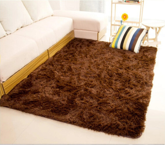 Shaggy Anti-skid Carpets Rugs Floor Mat/Cover 80x120cm (Brown)