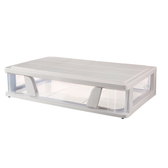 Transparent flat bed bottom storage box