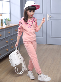 Korean-style girls New style autumn paragraph casual long-sleeved hoodie (Pink color)