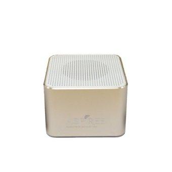 Aspiree Bluetooth Portable Speaker Gold