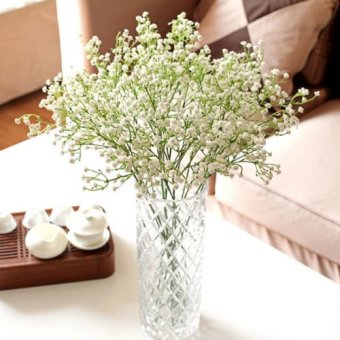 Where To For 6pcs Artificial Fake Silk Gypsophila Baby S