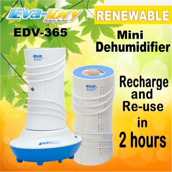EVA-DRY Renewable Mini Dehumidifier (renew in 2 hours) Singapore