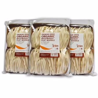 Harga Dr Gram Organic Buckwheat Flat Noodle 250g (3 Packets)