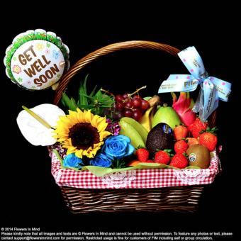Harga Get Well hamper (HP45)