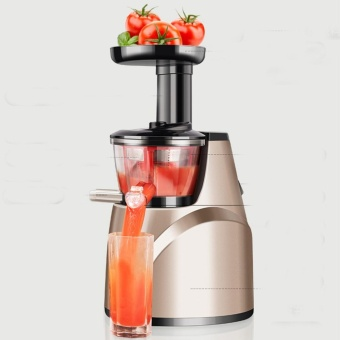 Harga BEST-FSH Whole Fruit Slow Juicer Hurom Stainless Steel Kitchen Aid - intl