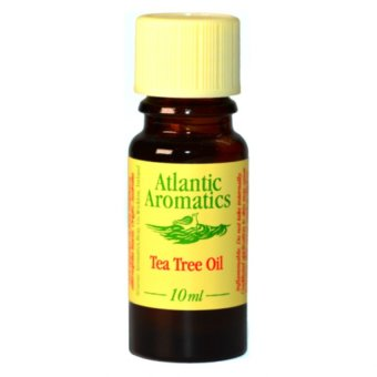 Atlantic Aromatics Tea Tree Organic Essential Oil - Melaleuca Alternifolia Leaf Oil - 10mL