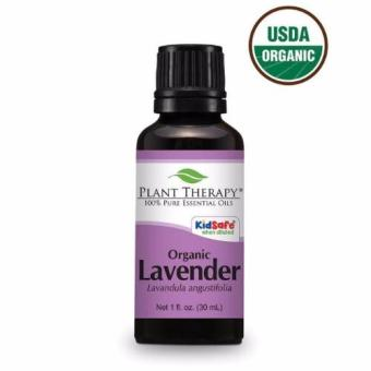Harga Plant Therapy Organic Lavender Essential Oil 30ml