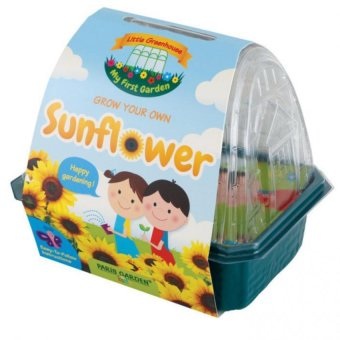 Harga Paris Garden Kids Greenhouse: Sunflower