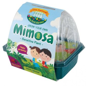 Harga Paris Garden Kids Greenhouse: Mimosa