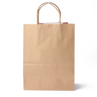 Harga 30pcs Kraft Brown Twisted Handle Shopping Gift Merchandise Paper Carrier Retail Bags 21x11x27CM - intl
