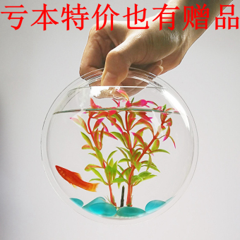 Harga Wall hanging vase home decor wall hangings room decoration gift fish tank small aquarium fish tank wall fish tank