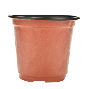 Harga 10pcs Mini Plastic Round Flower Pot Terracotta Nursery Planter