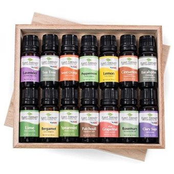 Harga GPL/ Top 14 Essential Oil Set. Includes 100% Pure, Therapeutic Grade Oils of Bergamot, Clary Sage, Cinnamon, Eucalyptus, Grapefruit, Lavender, Lemon, Lime, Patchouli, Peppermint, Rosemary, Spearmint, Orange & Tea Tree. 10 ml each./ship from USA - intl