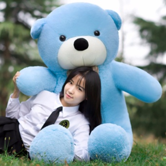 Chengyu Sky Blue Stuffed Toys Animal Cute Teddy Bear Plush Soft Toy 100CM - intl