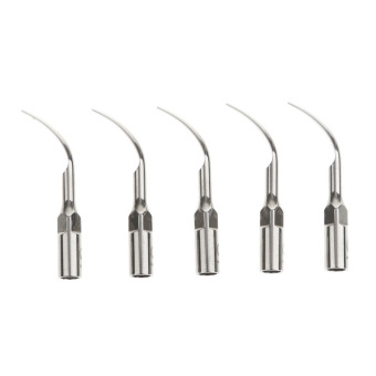 Harga BolehDeals 5 Stainless Steel Dental scaling Scaler Tips G1 For EMS WOODPECKER Headpiece