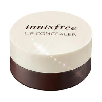 Harga Innisfree Tapping Lip Concealer 3.5g.