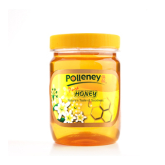 Harga Polleney Pure Honey 454g