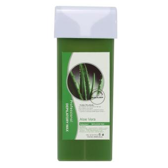 100g Professional Depilatory Wax Arm Leg Underarm Body Hair Removal(Aloe) - intl