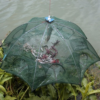 16 holes Automatic Fishing Net Shrimp Cage Nylon Foldable Crab Fish Trap Cast Net Cast Folding Fishing Net - intl