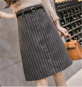 Korean-style woolen Spring and Autumn New style sheath skirt A-line dress (Black)