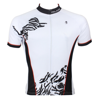 Harga PALADIN SPORT Cycling Men's Short Sleeve Jersey 033 - intl