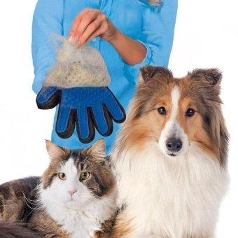 Harga DJ Touch Deshedding Glove For Gentle And Pet Grooming - intl