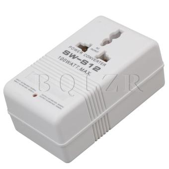 US Standard Voltage Power Converter 100W AC110V-220V