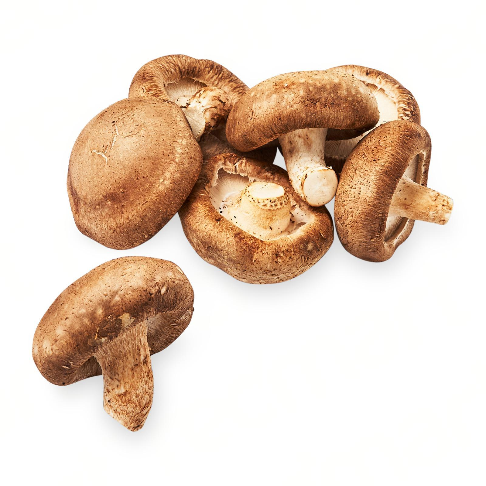 YUVVO Shiitake Mushroom: Buy sell online Mushrooms with cheap ...