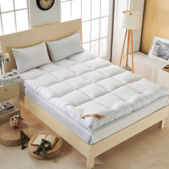 The New Price Of Tatami Mattress Topper Single Camel And Update