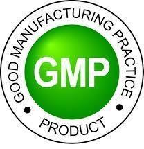 logo-gmp.jpeg