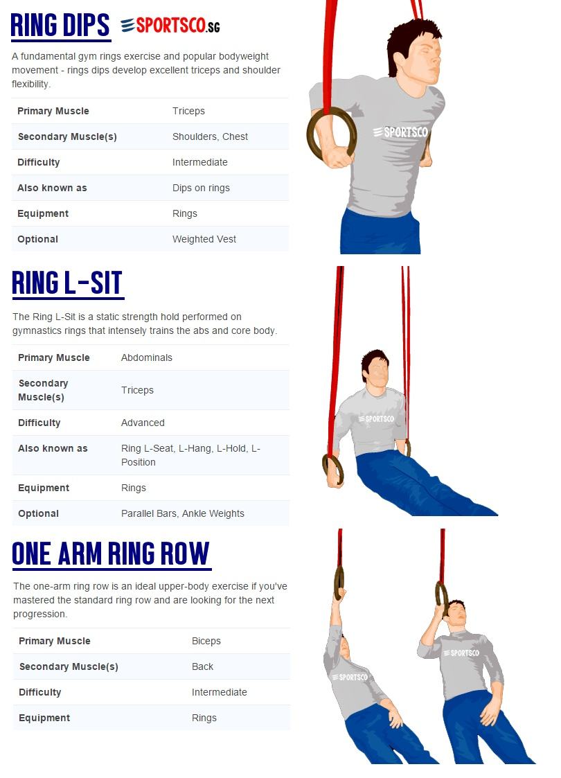 Gymnastic Ring Workout Pdf